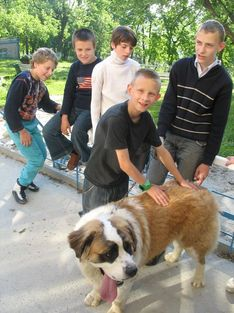 Dog-therappist in our school